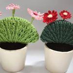 Cactus con flores de ganchillo paso a paso