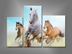 Triptico de caballos a galope