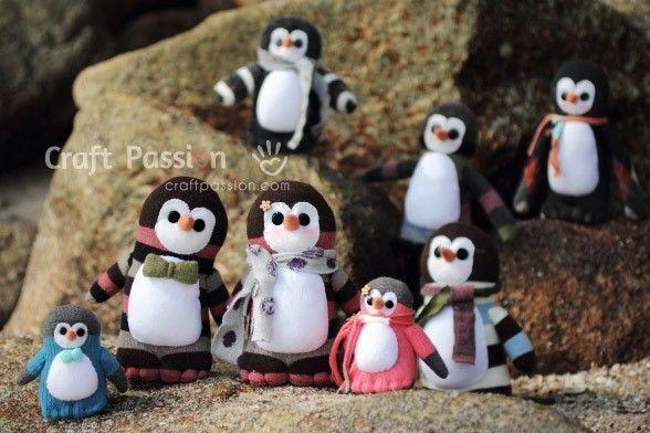 pinguino calcetin 18