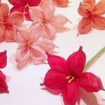 Flor con papel de seda