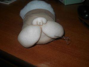 perrito-soft-7