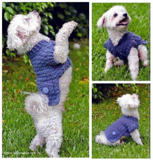 Suéter a crochet con bolsillos y botones para mascotas