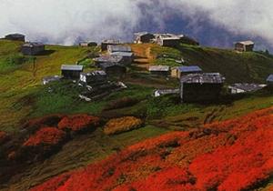 Kelepir fiyata satılık dağ evleri