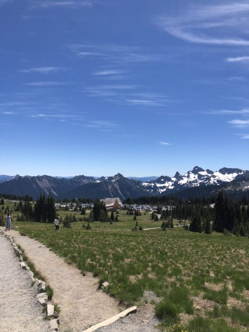 Mount Rainier National Park #mountrainier #nationalpark #seattle #pacificnorthwest