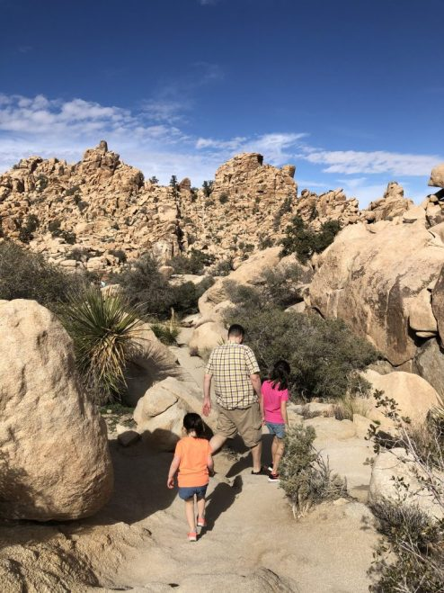 Joshua Tree National Park #joshuatree #joshuatreeNP #hikewithkids #california #joshuatreewithkids