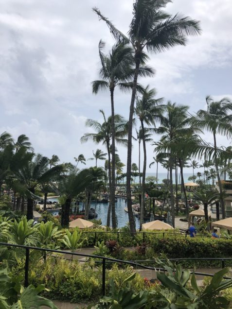 Grand Hyatt in Kauai pool #pool #hyatt #kauai #hawaii
