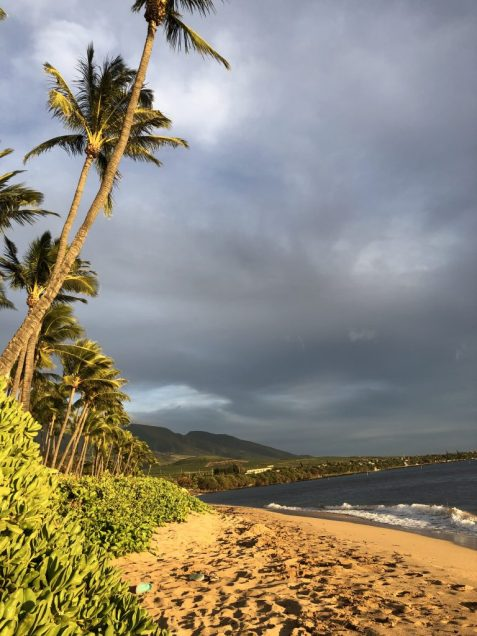 Maui before sunset #maui #hawaii #beach