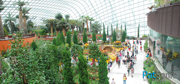 ภายใน Flower Dome - Garden by the Bay - Singapore