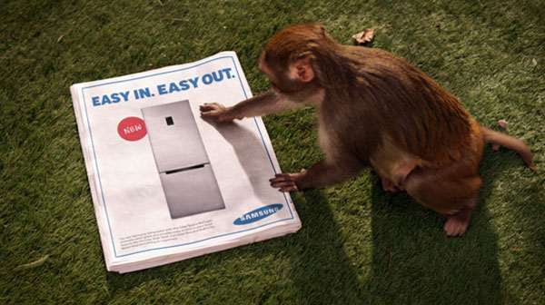 Monkey Thief - Sponsored by Samsung