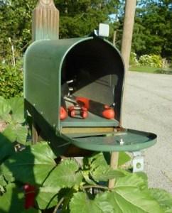 Garden Mailbox