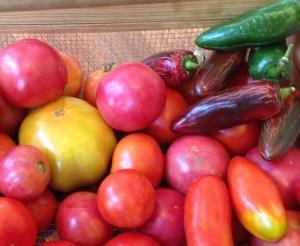 Use any variety of sun ripened tomatoes.