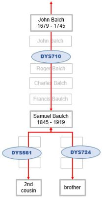Baulch Y DNA mutations