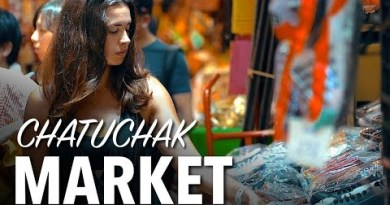 WORLDS BIGGEST MARKET – Chatuchak Weekend Market, Bangkok Thailand