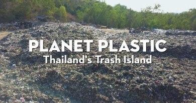 Koh Lan, Pattaya   Thailand's Trash Island   Planet Plastic   Coconuts TV
