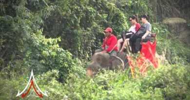 Pattaya Attractions – Chang Thai Thong Safari