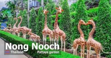 Nong Nooch Pattaya Backyard 2019 Gleaming park in Thailand tour 4k