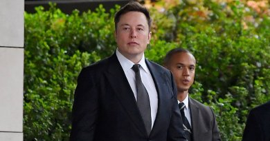 Thailand Felony authentic Suggests $190 Million in Damages in Elon Musk 'Pedo Guy' Defamation Lawsuit