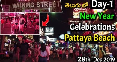 New Year Celebrations at Walking Boulevard and Pattaya Seaside  Day 1 | Bangkok Telugu Vlogs | BLTA 28
