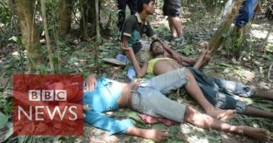 Thailand's human trafficking replace – BBC Data