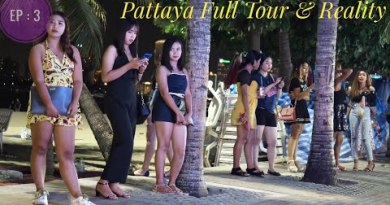 Pattaya City tour – Hotel, Beach, Ladies, Veg Food.