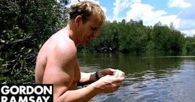 Gordon Ramsay Goes Oyster Fishing In Thailand | Gordon's Enormous Skedaddle