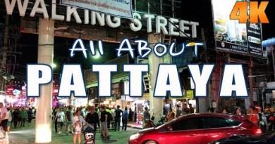 Pattaya Walking Aspect toll road Day Scenes 2019 All Spherical Pattaya Thailand Trot movies 51