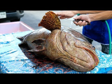 Thai Twin carriageway Meals – GIANT FRIED GROUPER FISH Bangkok Seafood Thailand