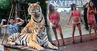 Indians exploring WALKING STREET and TIGER PARK in PATTAYA | THAILAND |