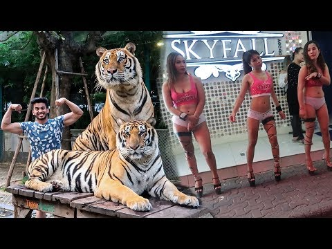 Indians exploring WALKING STREET and TIGER PARK in PATTAYA   THAILAND  