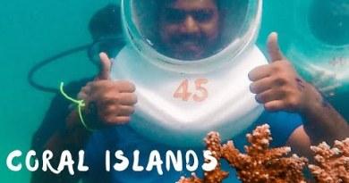 Skilled Coral Life! Coral Islands & Pattaya Metropolis   Thailand Vlog – Fragment 1