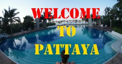 """Are dwelling Crocodile Hide  – Pattaya Thailand.  """"Beautiful World"""""""
