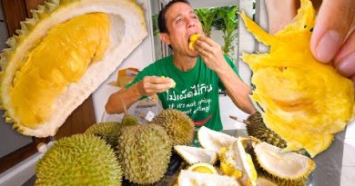 Durian Fruit in Thailand 🇹🇭- Making an try 8 Varied Kinds of the World's Finest Fruit!!