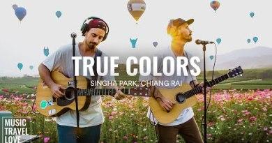 Appropriate Colours – Music Jog Devour (Singha Park – Chiang Rai, Thailand) (Cyndi Lauper Quilt)