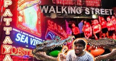 """CROCODILE MEAT"" IN PATTAYA WALKING STREET | NIGHTLIFE |"