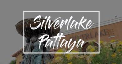 Silverlake Vineyard Pattaya, Thailand – Canon M50