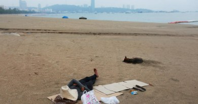 Pattaya Pattaya beaches, Koh Lan reopen from Monday