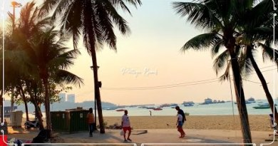 Pattaya Stride / Beach Street Watch Look for[2020]