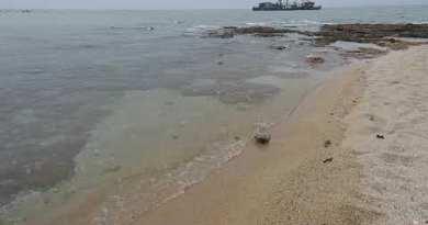 Pattaya Pratamnak Seashore, Raw Photos, October 2020