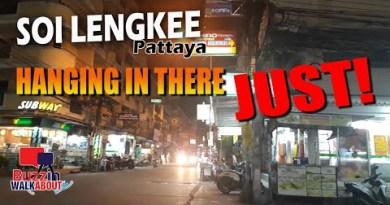 Soi Lengkee Pattaya November 2020 – Striking in there however very advanced time forward! ZERO TOURISTS