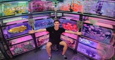 Inner Asia's *LARGEST* Aquarium Fish Market!! … (Bangkok Thailand) $$$