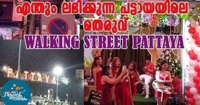 Walking Avenue,  Pattaya | Night Life | Thailand Vlog 11 | Malayalam