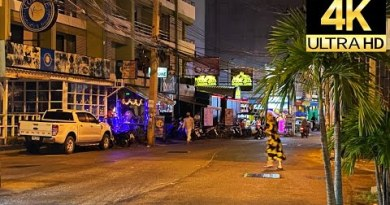 Pattaya 4K  Toddle 2020 Dec. Walkingstreet, Soi buakhao, PattayaTai, NightScene.