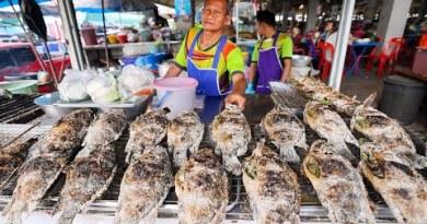Salt Crusted Tilapia – THAI STREET FOOD Tour in Isaan!!   Kalasin, Thailand!