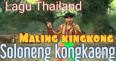 Lagu Thailand MALING KING KONG SOLONENG KONGKENG (Oficial video clip )