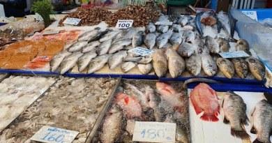 [4K] Fresh Seafood in Thailand @ Naklua Fish Market Pattaya