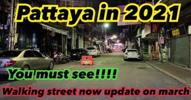 Pattaya Walking Boulevard in 2021 it's good to to seek!!!!! Replace on March 2021