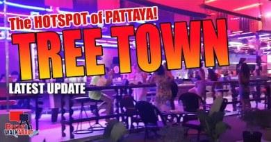 Soi Buakhao and Tree Metropolis Pattaya Metropolis. Is Tree Metropolis the space to be now in Pattaya? Opt a search…