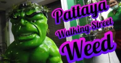 Pattaya Strolling Boulevard Marijuana Cafe