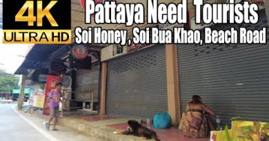 Pattaya 4K Stroll Pattaya Need Vacationers. Soi Honey, Soi Bua Khao, Soi 8, Seashore Dual carriageway.10th Oct.