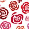白背景の赤いバラの花のイラストが並ぶパターン
